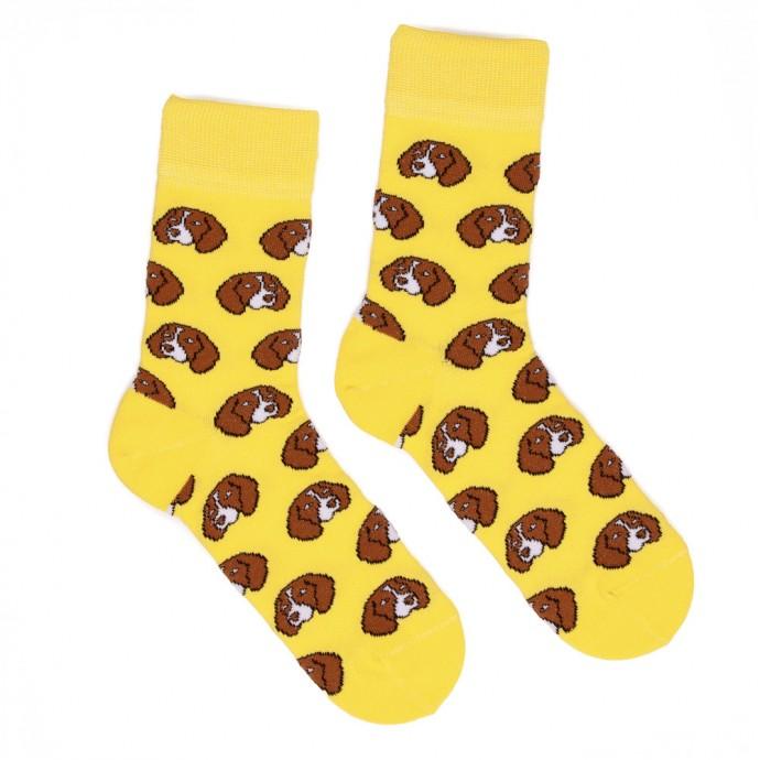 Жёлтые носки